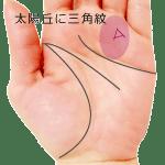 太陽丘にトライアングル▽三角紋