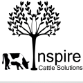 Logo sqaure 1262px