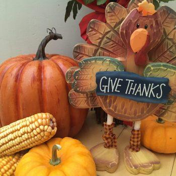 Allergy Safe Thanksgiving Turkey