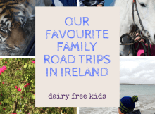 family road trips in Ireland