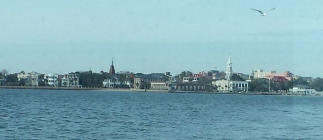 Charleston Harbor and Seagull