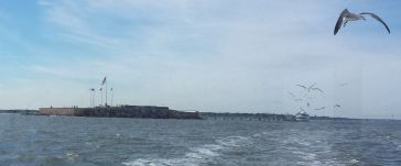Fort Sumter and Seagull