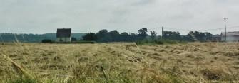 Normandy Field