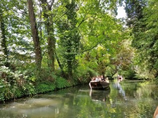 Verdant Section of Canal with a Boat Approaching Us