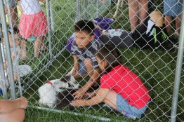 Kids playing in the petting zoo at the 2016 Breakfast!