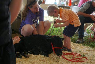 Kids enjoy listening to the calf's heartbeat.