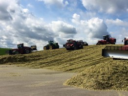 Kinnard_Farms-KF_Silage_Pile1
