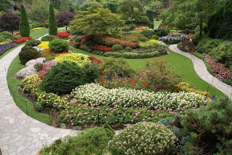 Show companion plants in garden.