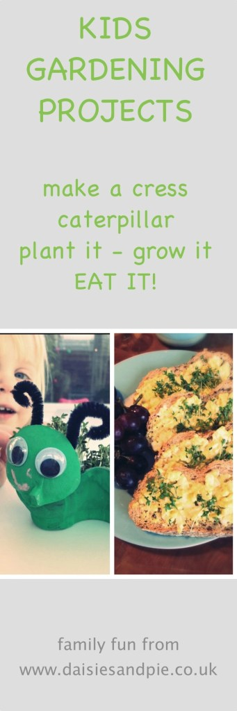 how to make a cress caterpillar, kids gardening activities, gardening with kids, plant it grow it eat it, kids activities from daisies and pie
