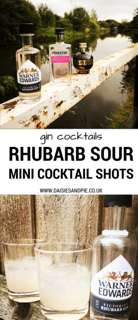 Rhubarb Sour Cocktail mini shots, pink gin cocktail party drinks, easy gin cocktail recipes