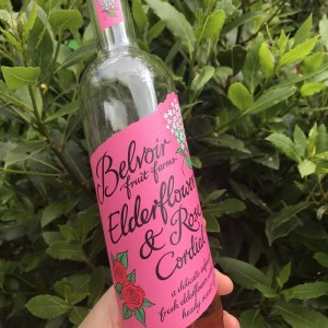 Belvoir elderflower and rose cordial in front of a large bay tree