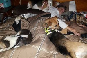 Chad and 6 dogs sleeping in a puppy pile