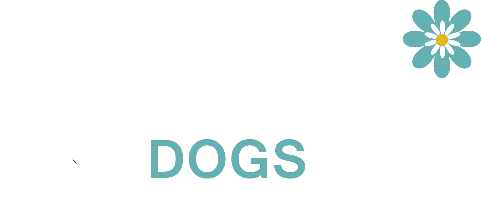 Daisy Dogs Grooming