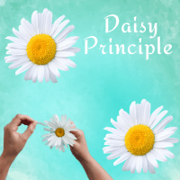 Thumbnail The Daisy Principle (2)