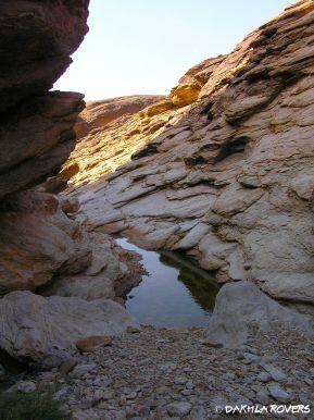 #DakhlaRovers #desert #Sahara