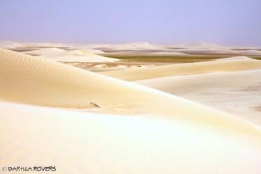 #DakhlaRovers #desert #dunes