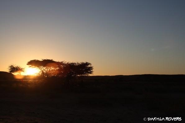 #DakhlaRovers #desert drivers