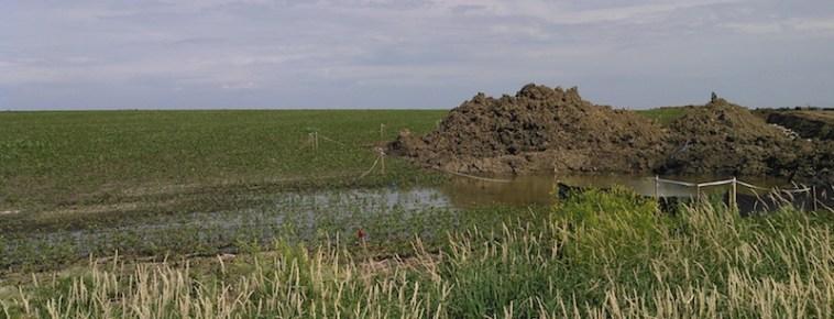 Standing water near Dakota Access Orland crossing.