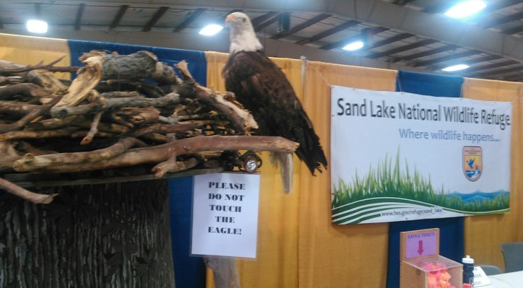 Sand Lake Wildlife Refuge eagle's nest display, Brown County Fair, 2016.08.18.