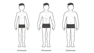 men-body-types