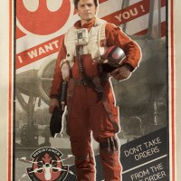 Poe Dameron Poster Boy of the Resistance