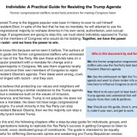 Invisible: A Practical Guide for Resisting the Trump Agenda