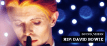 David Bowie Gallery of Iconic