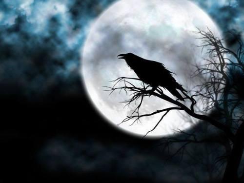 poetry night