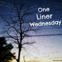 One liner Wednesday...