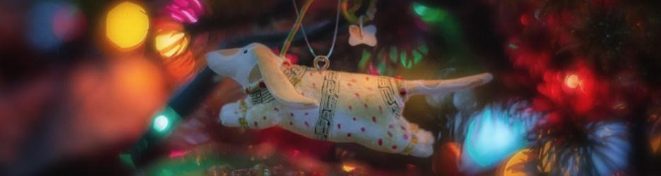Christmas Scenes: Three Pups, Two Santas, and a Fish