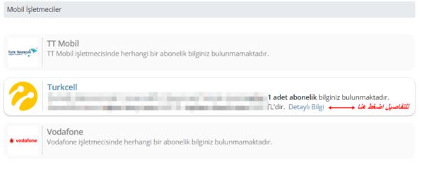 الكشف عن خطوط الانترنت المسجلة باسمك في تركيا