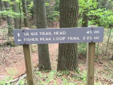 We chose to walk to the trail head which added a mile to the hike.