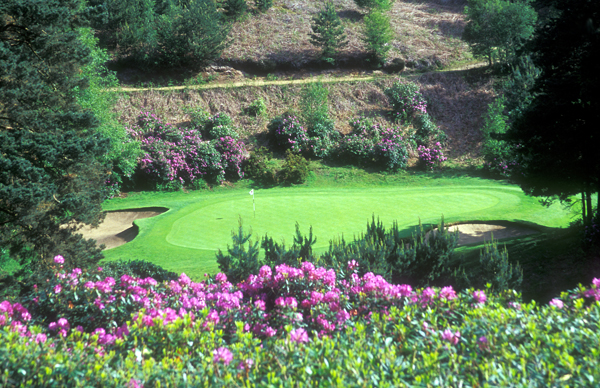 Duke's Course hole three. Copyright Donnelle Oxley