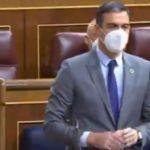 El ZASCA de Pedro Sánchez a Casado y Abascal: «Se le está poniendo cara de Albert Rivera» (+VIDEO)