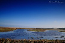 cley-marshes_img_3072_25-10-16