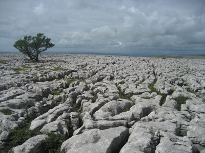 In Love with Limestone
