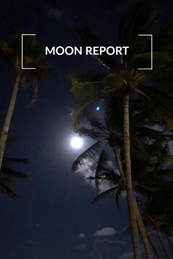 moon-report