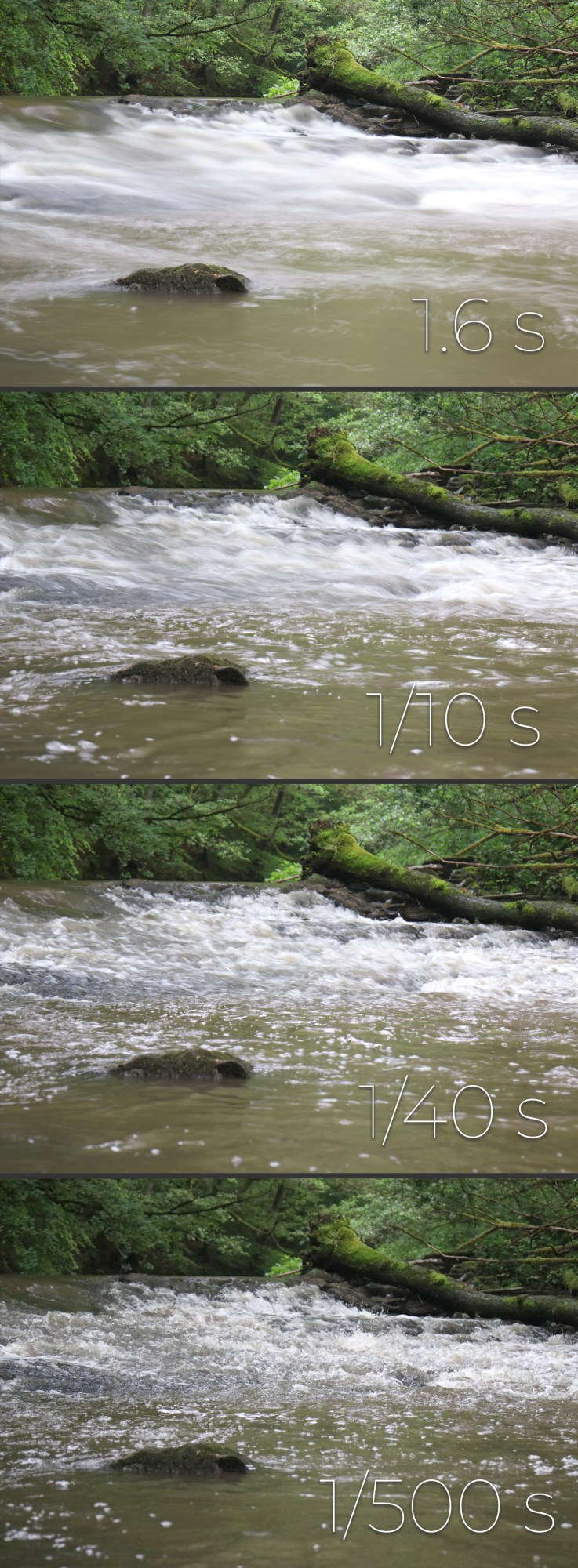 Get to know your camera - I like to call aperture, shutter speed and ISO the Holy trinity of photography. (Dalibro.com)