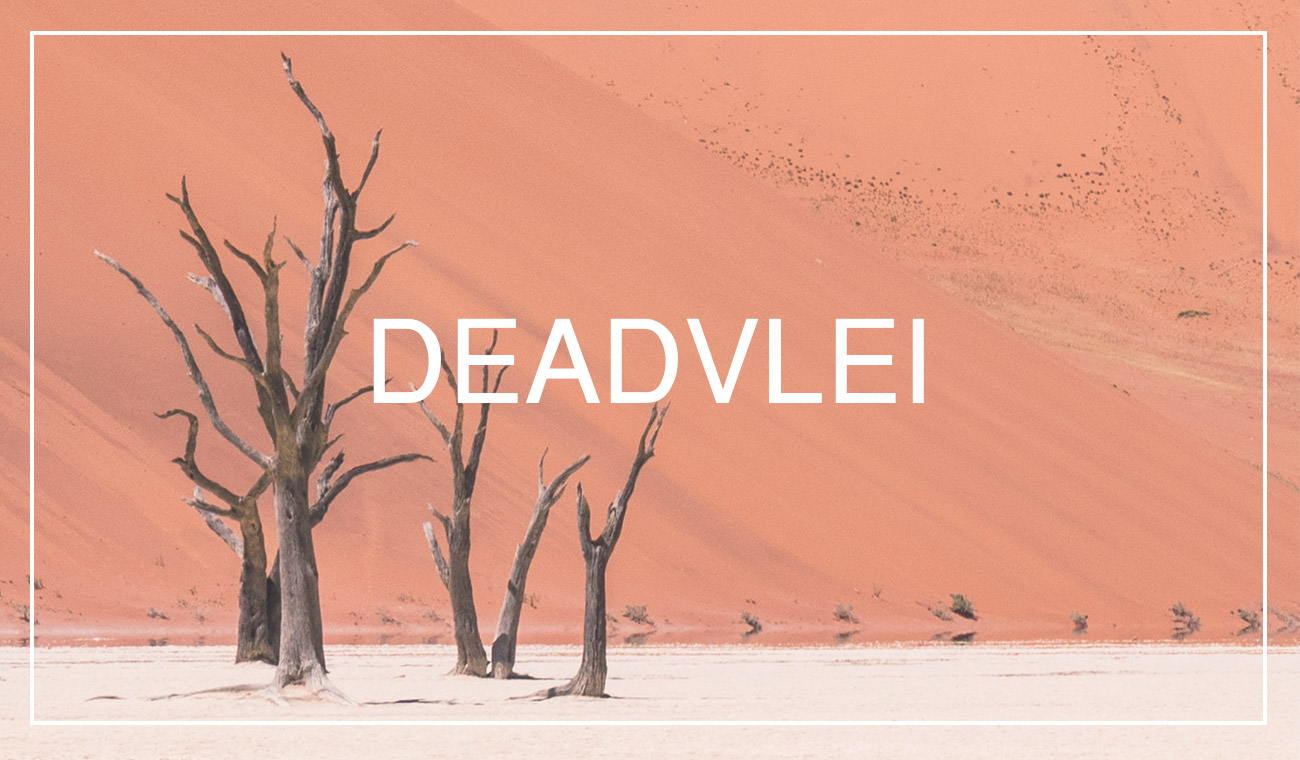 Visiting & photographing Deadvlei, Namibia