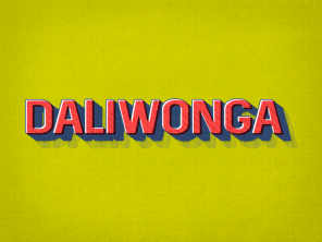 Daliwonga is an Apple Certified Support Professional