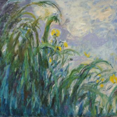 MMT 154652 The Yellow Iris (oil on canvas) Monet, Claude (1840-1926) MUSEE MARMOTTAN MONET, PARIS, ,