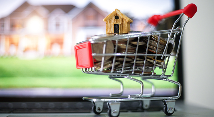 selling home and shopping,money