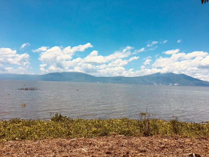 The shores of Lake Chaoala in Ajijic, Mexico, on the August 2, 2019.(Alfredo Corchado/Staff Photo)