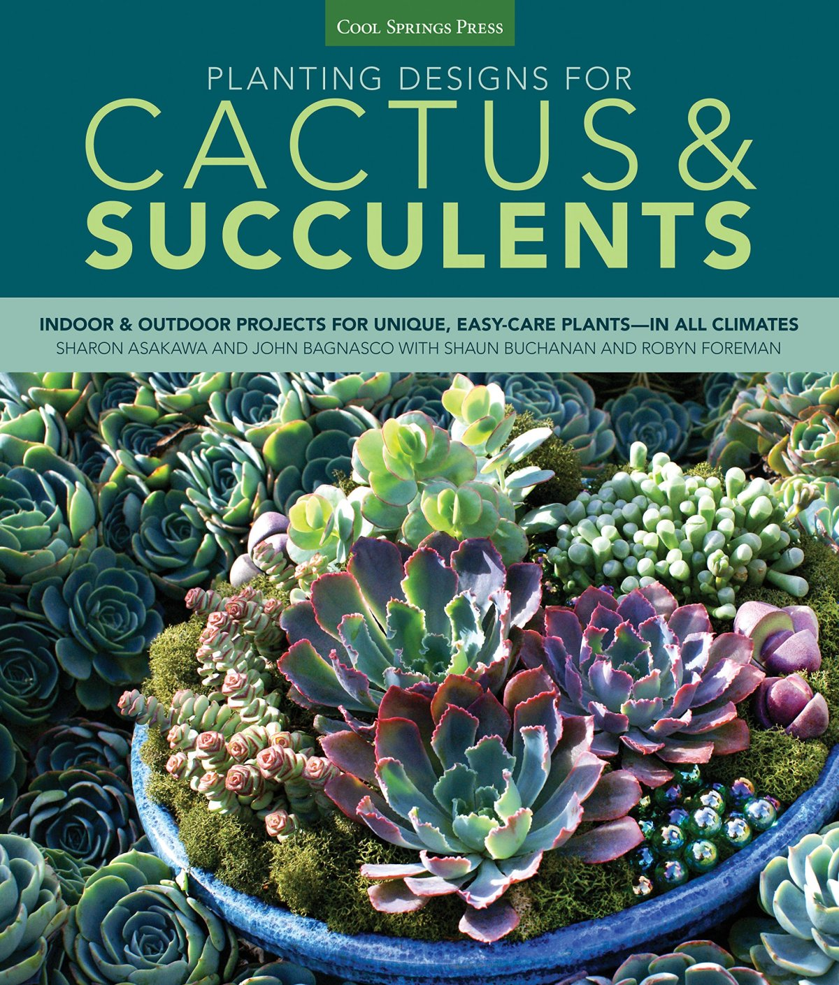 Planting Designs for Cactus and Succulents