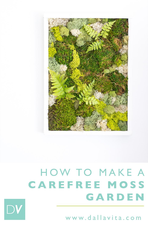 How to make a moss garden - Dalla Vita