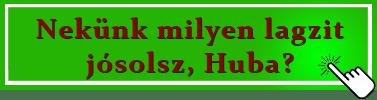 Laxi-Gomb-milyet-josolsz