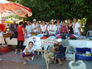 Dohakder stall in the square raising money for cats and dogs in Dalyan.