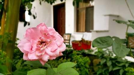 best-hotel-in-dalyan-riverside-hotel-dalyan-41