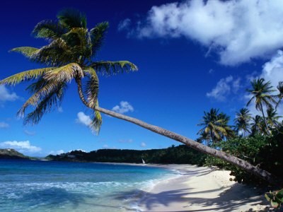 leewardislandspolynesia
