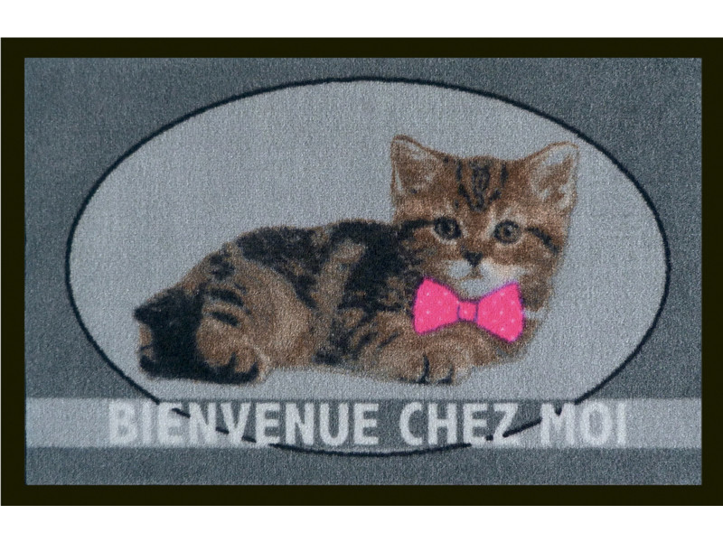 tapis anti poussiere en polyamide iris le chat dim 40 x 60 cm pegane